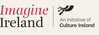 Logo for Imagine Ireland